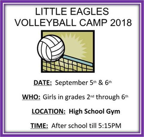 Little Eagles Volleyball Camp 2018